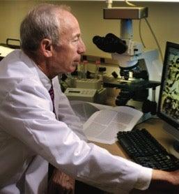 Dr Marc Lippman